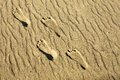 Footprints in the sand four on a secluded beach of golden Stock Photo