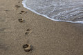 Footprints in the sand a lot of on Stock Photo