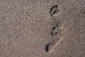 Footprints in sand sunny day wet of beach Royalty Free Stock Photo