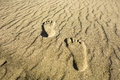 Footprints in the sand two left and right on a secluded beach of golden Royalty Free Stock Photo