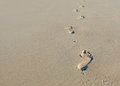 Footprints in sand walking alone the Stock Photo