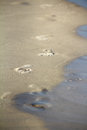 Footprints in sand washed away by tide Stock Photos