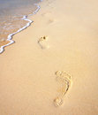 Footprints on the sandy beach along the sea Royalty Free Stock Image