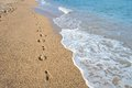 Footprints on the shore on the ocean Royalty Free Stock Photo