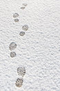 Footprints in the snow background Royalty Free Stock Photography