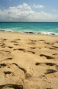 Footprints, St. Maarten Stock Photography