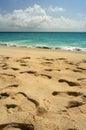 Footprints, St. Maarten Stock Photography