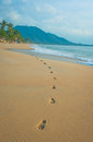 Footprints in a tropical beach Stock Image