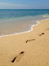 Footprints on the tropical sandy beach Royalty Free Stock Image