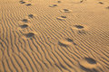 Footprints on the wavy golden sand beach. Abstract. Royalty Free Stock Photo