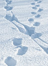Footsteps Stock Image