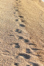 Footsteps at the beach Royalty Free Stock Photos