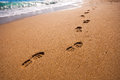 Footsteps on the beach in summertime Royalty Free Stock Photography