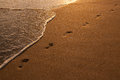 Footsteps in the golden sand on the beach evening sun waves Stock Photography