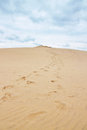 Footsteps leading to the top of dune of pilat in france du tallest sand europe located arcachon bay area Royalty Free Stock Photos