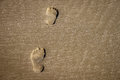 Footsteps in the sand on beach Royalty Free Stock Photo