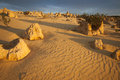 Footsteps in the sand in the pinnacles desert animal at sunset Stock Photo