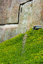 Footway in plant of coltsfoot near the fortress wall Stock Photo