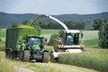 Forage harvester during harvesting of whole crop silage with chopped material transporter grain as for biogas production Stock Images