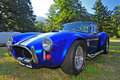 Ford Cobra Royalty Free Stock Photos