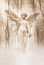 Forest angel angelic female figure materialising in an atmospheric misty rendered in warm sepia tones Stock Images