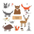 Forest animals in cartoon style on white background forest anim set wildlife collection vector illustration Royalty Free Stock Photo
