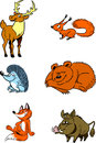 Forest animals the illustration shows some species of wild isolated on a white background illustration done in cartoon style on Stock Photos