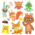 Forest animals set cartoon. Vector illustration. Big set of cartoon woodland animals illustration.