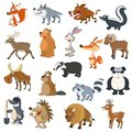 Forest animals set for web design Royalty Free Stock Photography