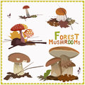 Forest autumn mushrooms illustration Royalty Free Stock Photos