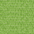 Forest background pattern verde sem emenda Imagens de Stock Royalty Free