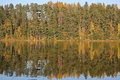 Forest of colorful autumn trees reflecting in calm lake. Nature landscape. Royalty Free Stock Photo
