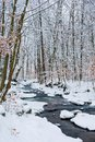 forest creek in winter forest. Royalty Free Stock Photo
