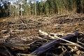 Les zničení