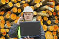 Forest employee with pc near stacks of logs Royalty Free Stock Image