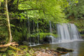 Forest Falls, United Kingdom, England Stock Photos