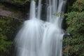Forest Falls, United Kingdom, England Stock Photography