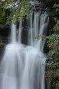 Forest Falls, United Kingdom, England Stock Images