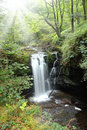 Forest Falls, United Kingdom, England Stock Photo