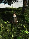 Forest gnome Royalty-vrije Stock Afbeelding
