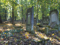 Forest graves the and tombstones in europe s biggest historic jewish cemetery in lodz Stock Photography