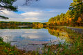 Forest lake in fall autumn at the Royalty Free Stock Photos