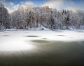 Forest lake in winter of the woods landscape Stock Photos