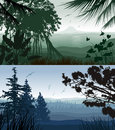 Forest landscape illustration of tropical and pine Royalty Free Stock Photo