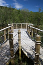 Forest loch viewing platform a wood rope and willow over dalshinnie in mabie dumfries scotland Stock Images