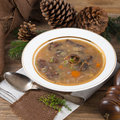 Forest mushroom soup a fresh and tasty Royalty Free Stock Photo