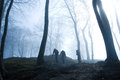 Forest nature people in foggy dark Stock Images