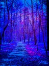 Aliens Coming in dark blue and purple forest Royalty Free Stock Photo