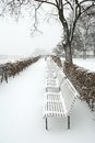 Forest park benches covered heavy snow Royalty Free Stock Photo