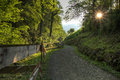 Forest path at sunset in schwyz canton of switzerland Royalty Free Stock Photos